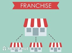 Consulting services related to franchising