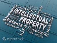 Legal consultancy on intellectual property law in Vietnam