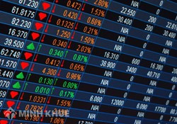 Counseling on the establishment of a securities company