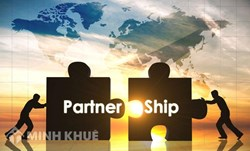 Consultancy service on the establishment of partnerships