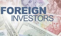 Legal consultancy services in the field of foreign investment in Vietnam
