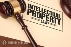 Legal consultancy on law of intellectual property law