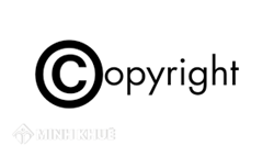 Legal consultancy and legal service for copyright protection