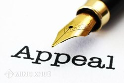 Intellectual Property Consultancy Service: Appeal, opposition to the application decision