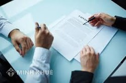 Consultancy on the business management and drafting contracts