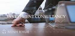 Consultancy on domestic and foreign investment in Vietnam