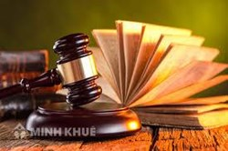 Regular consultancy serivces provided by Minh Khue Law Firm