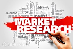 Surveying and market researching services