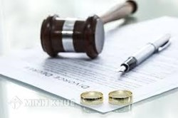 Lawyer counseling services on divorce, division of common property and disputes custody