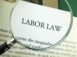 Consultancy on labor law via call center and via email
