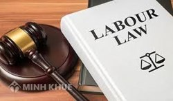 Legal consulting services in the field of labor