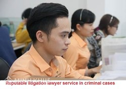 Professional lawyer services to participate in defense in criminal cases