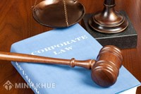 Consultancy on administrative law:
