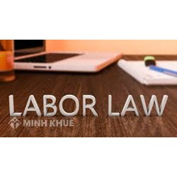 Legal consultancy in the field of labor law