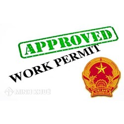 Consultation on issuance of work permits for foreigners in Vietnam