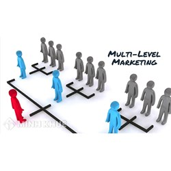 Consulting services for granting multi-level marketing licenses