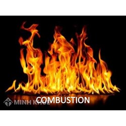 Register inventions in the area of combustion apparatus and combustion processes in Vietnam?